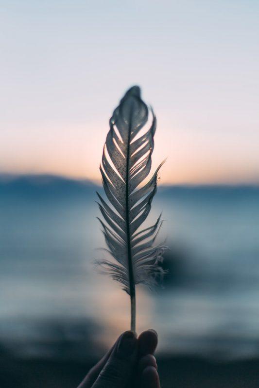 Feder innerer Frieden